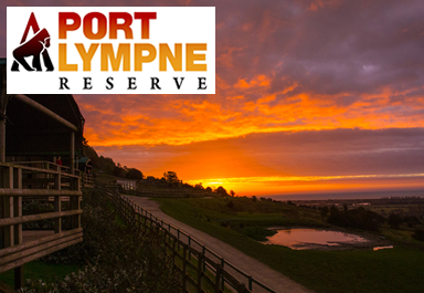 Port Lympne Reserve